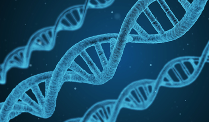 Genetic testing for cancer patients